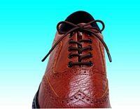 Elasticated Shoe Laces