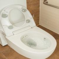 Geberit Mera Care Wash Dry WC