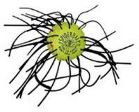 Spider Ball