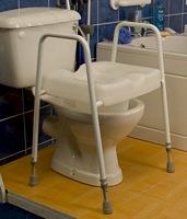 Toilet Seat & Frame