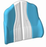 Systam Back Support Cushion