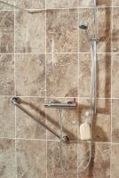 Arka Thermostatic Mixer Shower