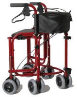 Triumph Plus Walker