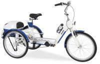 Draisin Eclipse Trainer Tricycle For Teens