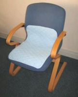 P&s Healthcare Washable Chair Pad