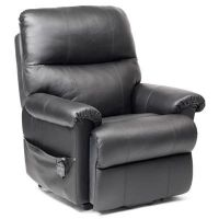Borg Dual Motor Leather Riser Recliner Chair