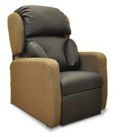Eco Dual Motor Flex Chair