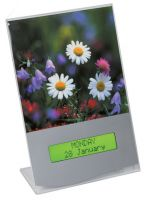 Abilia Forget-me-not Electronic Calendar