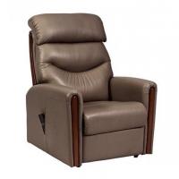 Santana Dual Motor Rise Recline Chair