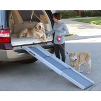 Tri-scope Dog Ramp