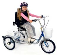 Trilogy Special Needs Trike