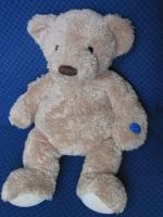 Arthur Musical Teddy Bear