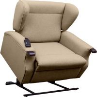 Daviot Tilt In Space Single Motor Riser Recliner