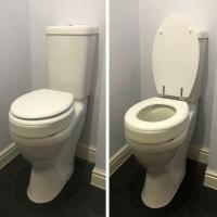 Throne Toilet Raiser