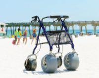 DeBug Beach Walker