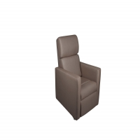 Noble Riser Recliner Chair