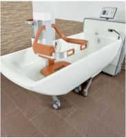 Eve Shower And Care Bath Hoist