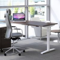 Hirise Height Adjustable Single Desks