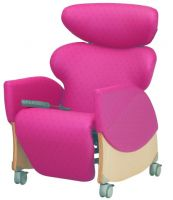 Riser Recliner Chairs Category