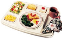 Heated or insulated trays category