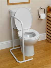 Floor mounted toilet rails category
