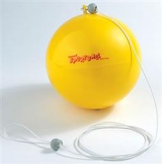 Non-standard balls category