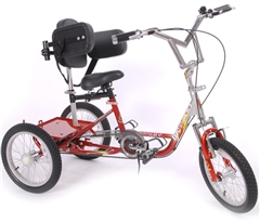 Chain drive tricycles category