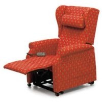 Riser and recliners category