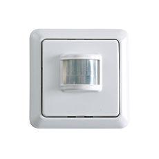 Remote Control Motion Detector