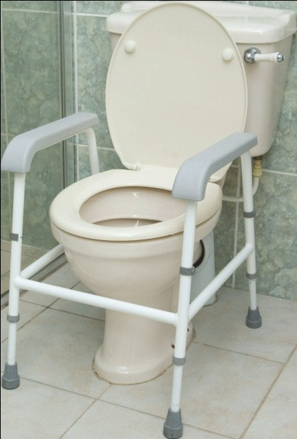 nuvo childrens toilet frame