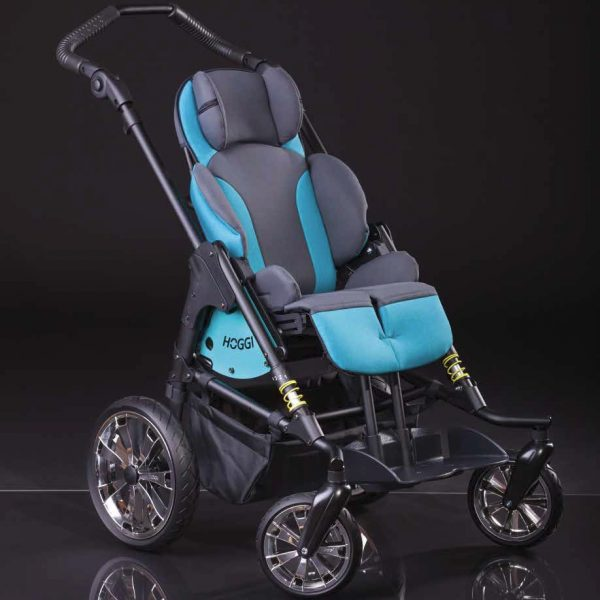 Bingo Evolution Rehab Buggy