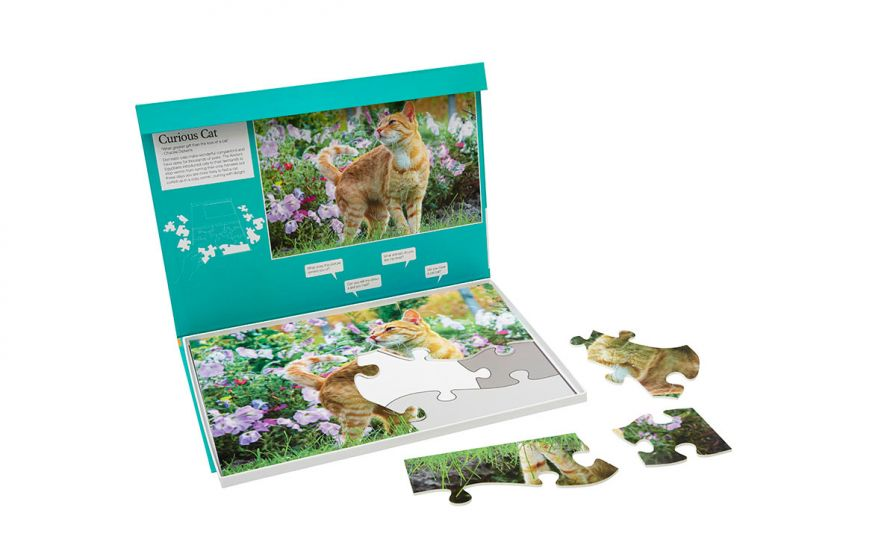 13 Piece Jigsaw Puzzle 1