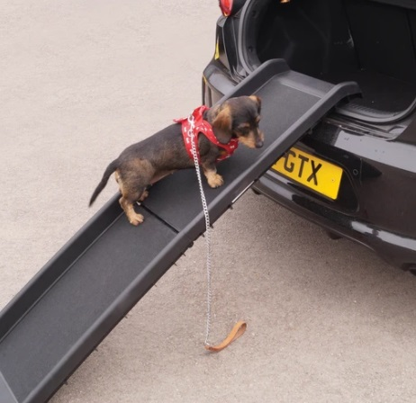 Folding Dog Ramp 1