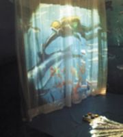 Image of Projection Curtain