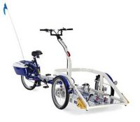 Image of Draisin Bliss Platform Bike
