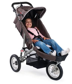 Considerations when choosing a buggy